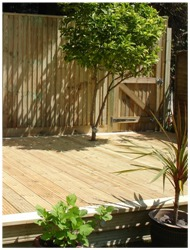 Deck w-Tree thru